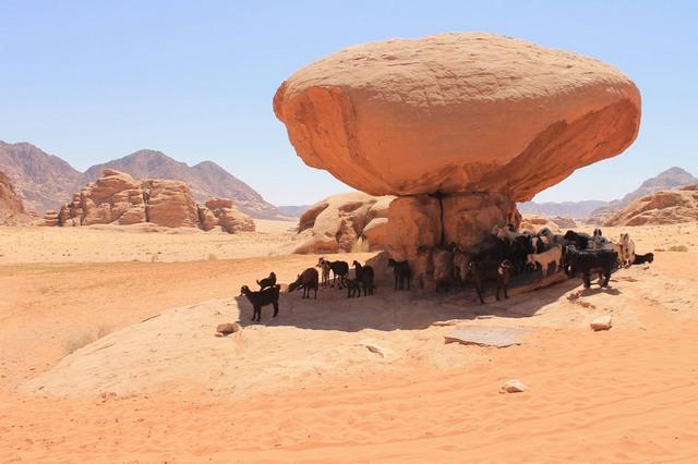 keliones jordanijoje
